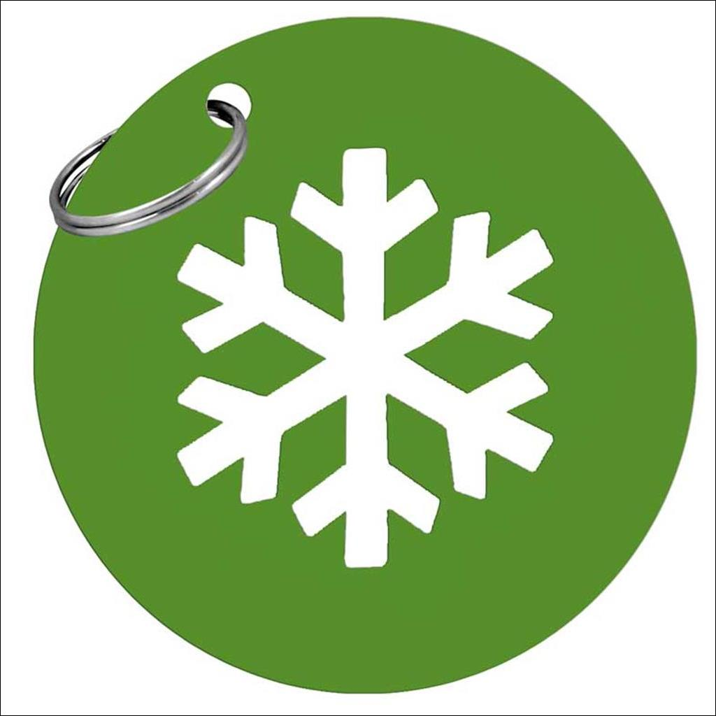 Snowflake metal keyring - Green