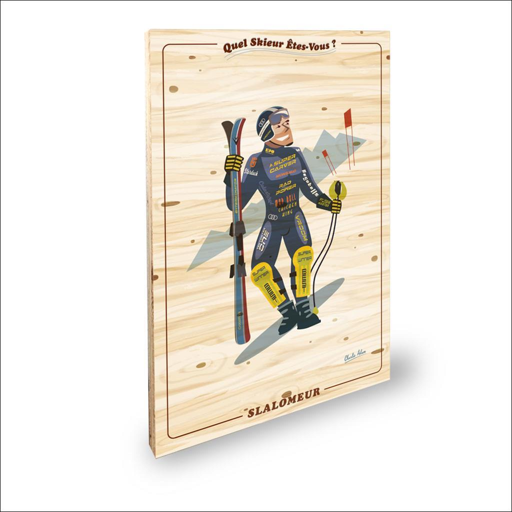 Skieur Slalomeur